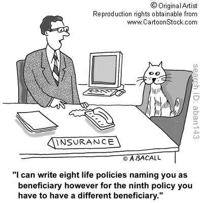 How To Write A Life Insurance Policy On 9 Lives