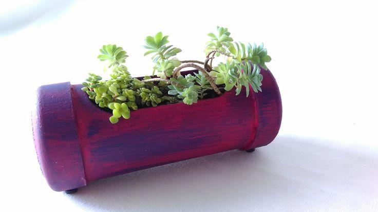 Mini terrario en tubo de PVC con suculentas