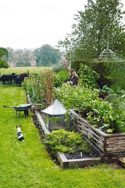 8 best Rain Garden, bioswale images on Pinterest | Rain garden ...
