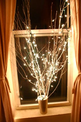 Homemade Christmas Decor - Branches spray painted white, anchored in a tall vase with lots of spare change, then displayed with christmas lights wrapped around :)
