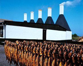 Smoked herring from Bornholm, Denmark.