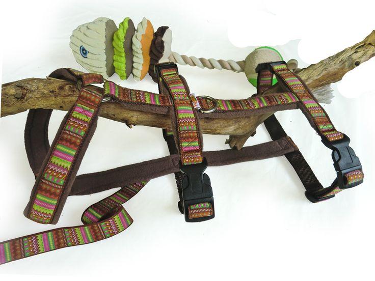 85 best hundegeschirre images on pinterest chow chow and preserve. Black Bedroom Furniture Sets. Home Design Ideas