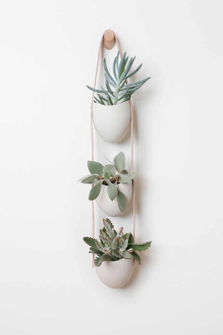 3-Tier Ceramic + Leather Planter by light and ladder
