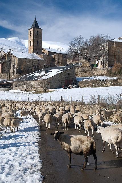 Llessui, Lleida
