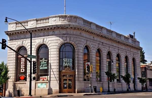 The Petaluma Seed Bank is located at 199 Petaluma Blvd. N.                             Use to be Bank of America...