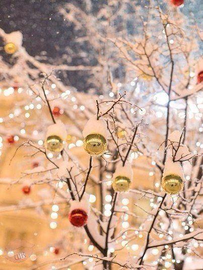 Я хочу незабываемый Новый год. Много-много снега и близких людей рядом. ❄