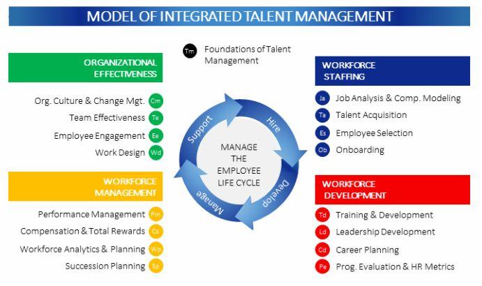 integrated talent management model
