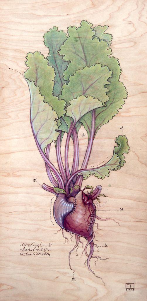 Fay Helfer - Heart Beet
