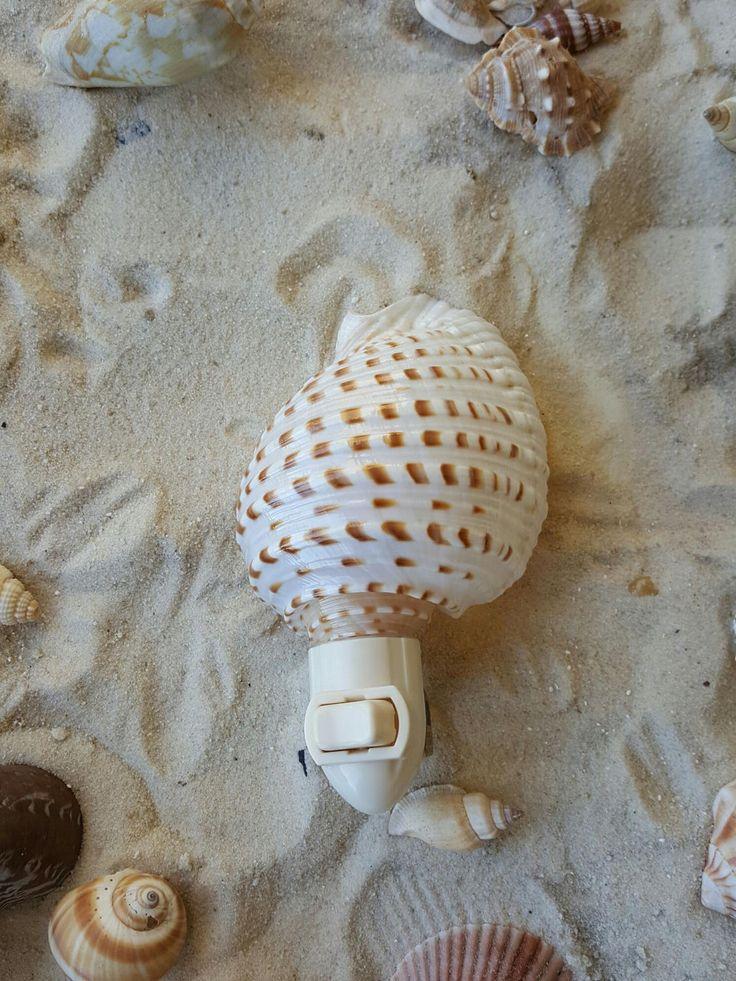 Natural Sea Shell Nightlight, Shell nightlight by BeachHomeDecor on Etsy