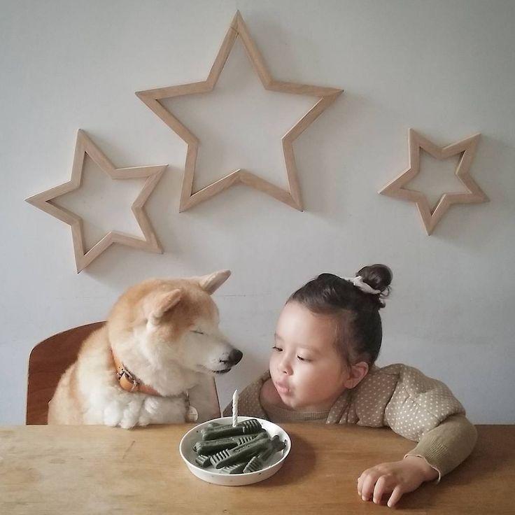 . Philo: Fais un voeu, je souffle ta bougie. Pompon: Je souhaite qu'on reste amis toute la vie...