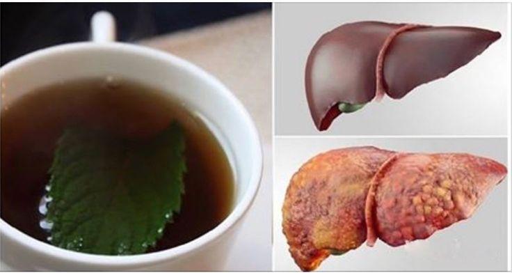 3 Bebidas Que Vão Desintoxicar O Fígado E Eliminar Toda A Gordura Em Pouco Tempo! - Leia e Descubra!