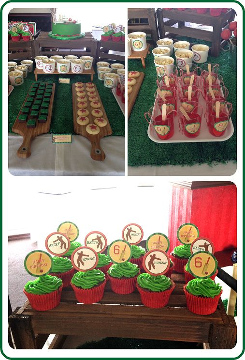 Cricket themed party | CatchMyParty.com
