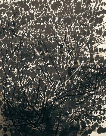takako azamis plum and maple trees essay Art analysis - takako azami's plum and maple trees.