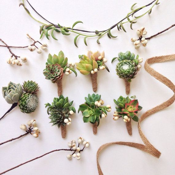 6 Boutonnieres of assorted succulents and Tallow Berry wrapped in sisal/jute. One of a kind boutonnieres for every member of your bridal party. Two
