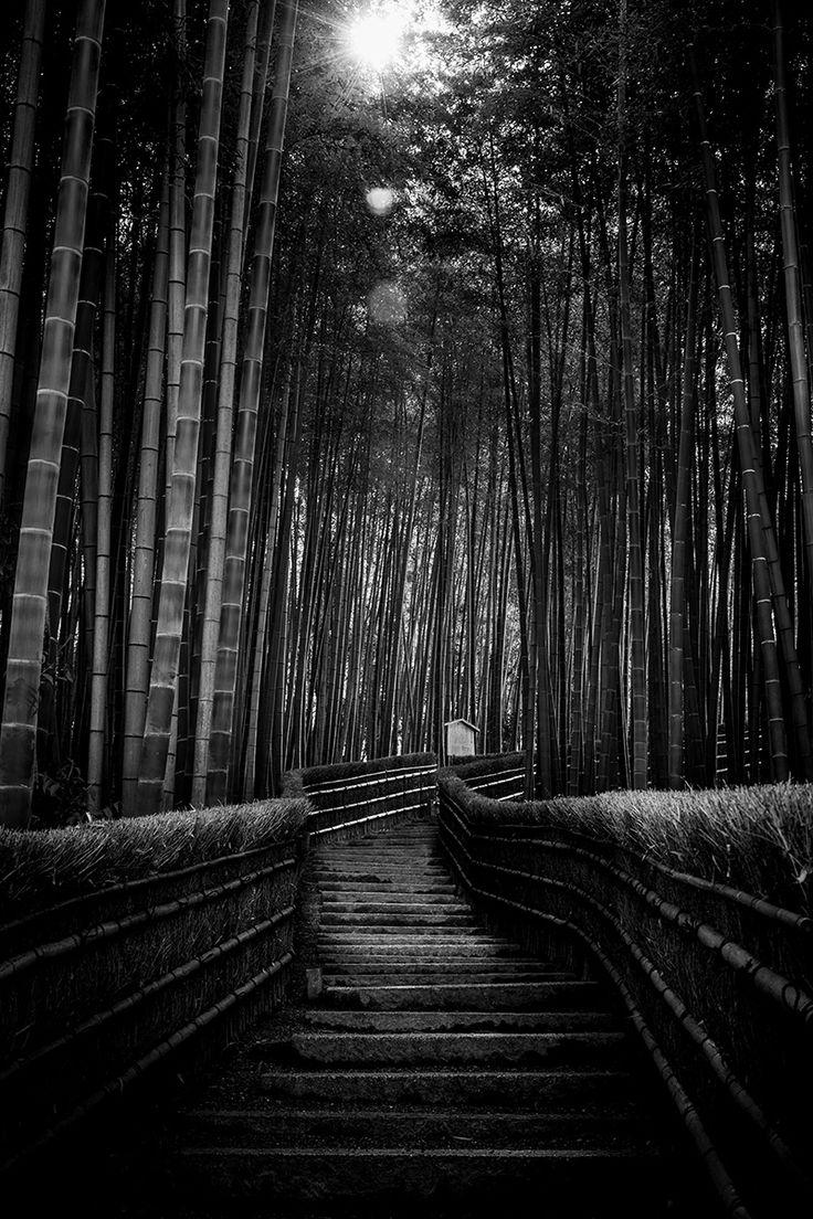 Arashiyama Bamboo Forest, Kyoto, Japan, 2016. Original, limited edition, signed, fine art prints on Hahnemühle high quality paper. #japan #kyoto #arashiyama #bamboo #travel #photography #blackandwhite #monochrome #fineart #print