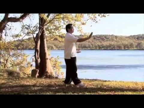 Tai Chi for Beginners Starring Chris Pei 2011 full DVD