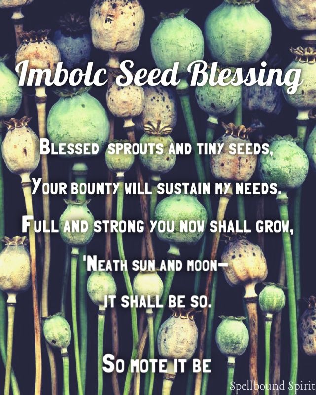 Imbolc Seed Blessing