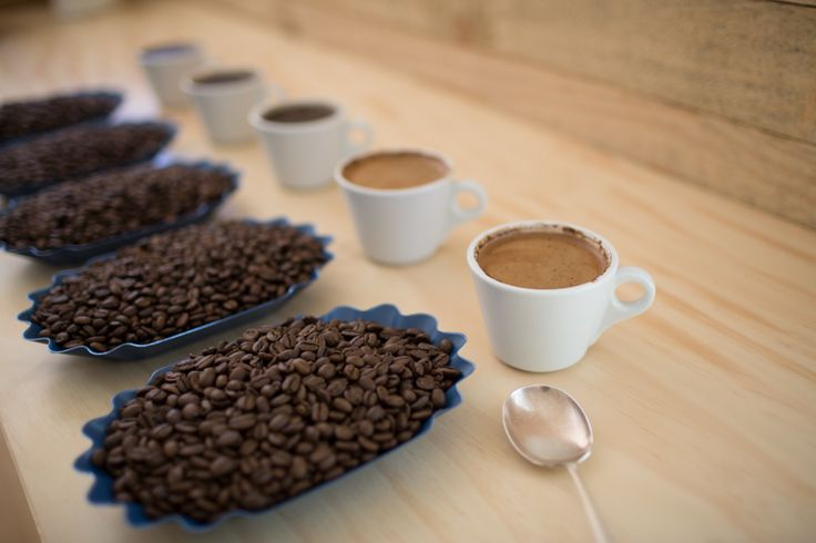 Cupping time at Byron Bay Coffee Company.   www.byronbaycoffeeco.com.au