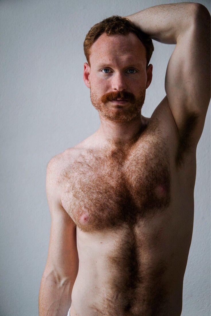 from Boone hairy gay bears magazines