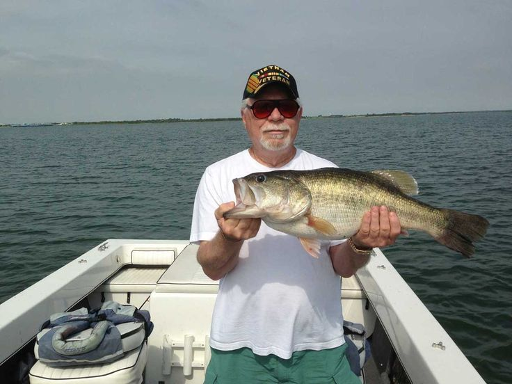Lake Ray Roberts Fishing Guide Jim Walling - Bass Fishing, White Bass Fishing, Crappie Fishing.  23+ years Guiding Fishing Trips on Ray Roberts - Family Fishing Trips, Updated Fishing Report, Guaranteed Fun! - North Texas Dove Hunts and Dove Leases