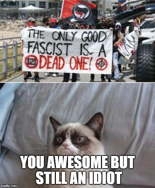 Grumpy cat vs antifa Meme Generator - Imgflip
