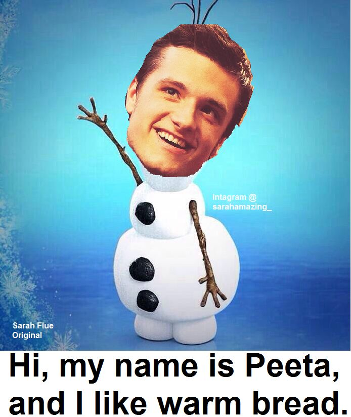 Was watching Hunger Games: Catching Fire and thought about Frozen, so... I made this.