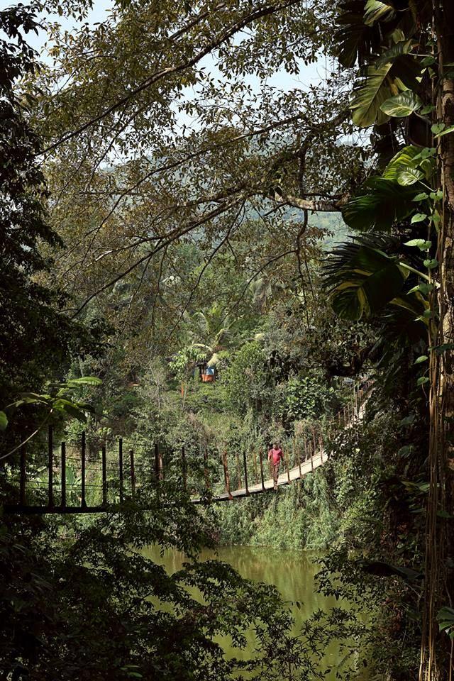 Kithulgala, Sri Lanka by Tharindu Amunugama. #VisitSriLanka