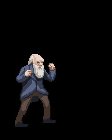 Teoria de la evolucion de la pelea