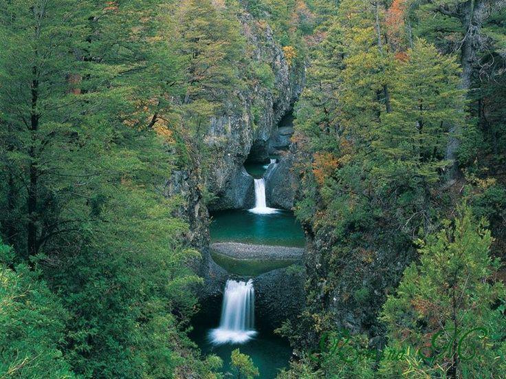 En este día de la tierra te invitamos a conocer y disfrutar de los bosques nativos de Chile. Uno de los lugares idóneos para ello es el Parque Nacional Siete Tazas, reserva famosa por sus pozones de agua cristalina. ¿Lo has visitado?