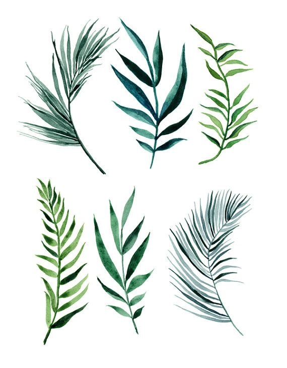 ORIGINAL Palm Leaves water-colour painting by ImaginaryNature