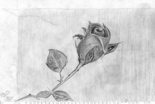 ζωγραφικη με μολυβι - Αναζήτηση Google