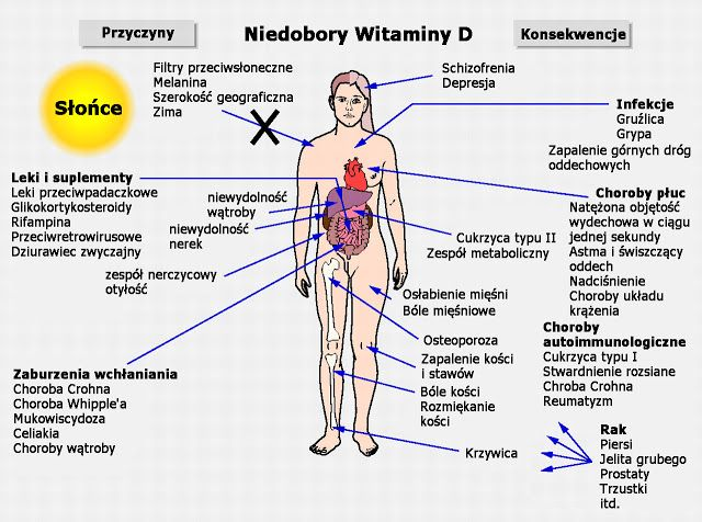 Zdrowie i świadomość: Wszystko co powinieneś wiedzieć o dawkowaniu witaminy D3.