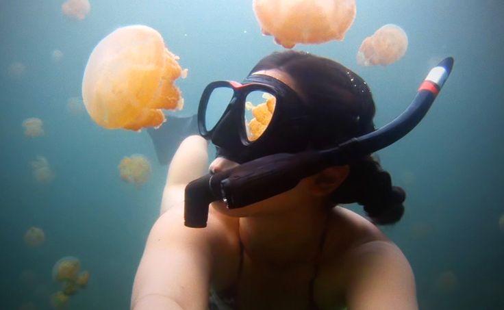 Первая помощь при ожоге медузы