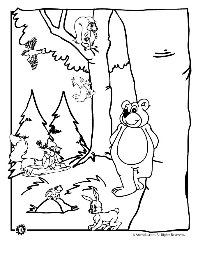 forest animal printable coloring pages - Baby Forest Animals Coloring Pages