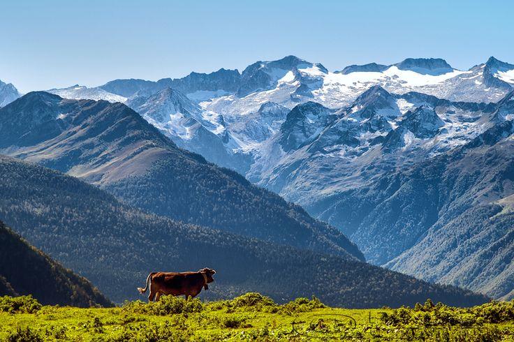 81 best val d 39 aran images on pinterest andorra ski - Inmobiliarias valle de aran ...