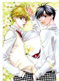 Hana Kimi ( For you in full blossom) :3