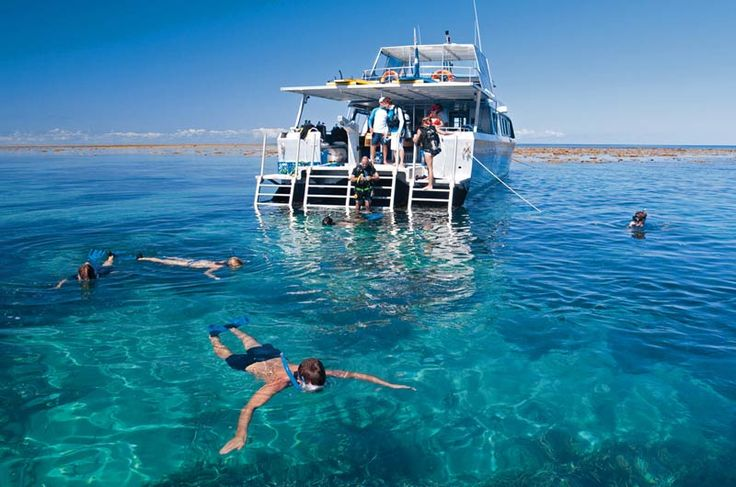 Port Douglas Snorkel Only Vessel - Snorkel Trips to the Outer Barrier Reef