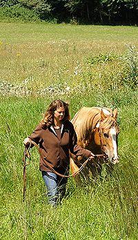 Reiten auf Rügen - Reiterhof Viervitz - Reitanlage Gut Boldevitz - Westernreiten - Reiterferien - Kutschfahrten - Gesundheitssport - Angebote für Kinder - Reitkurse für Reiteinsteiger - Reiten Ü50 - Urlaub wo Rügen am Schönsten ist