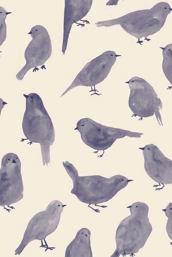 art, aves, background, bird, cute, dark, drawing, fondos ...