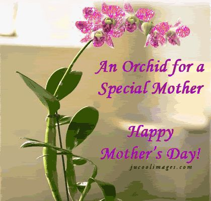happy mothers day quotes | Happy Mother's Day Quotes Facebook Graphics Comments Style