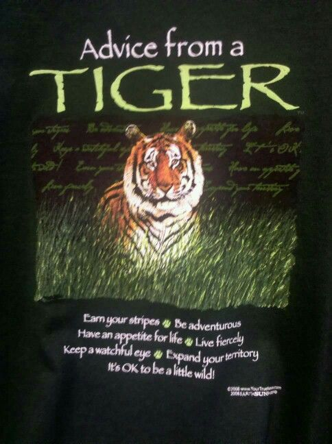 Advice From A Tiger