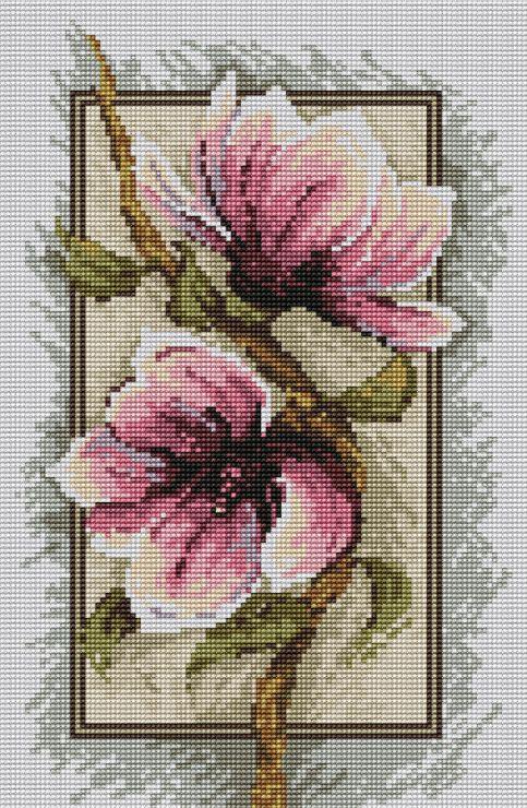 Gallery.ru / Фото #1 - magnolie2 - sabka