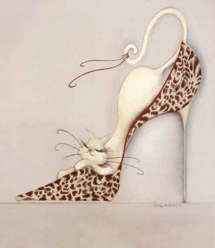 cat on a shoe