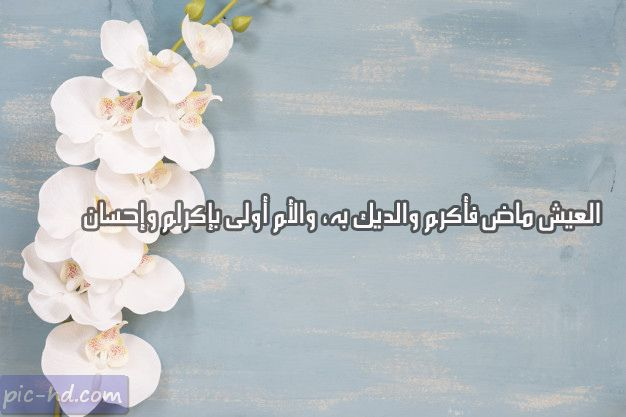 Pin By Wedad Katranji On Quotes With Images Math Arabic Calligraphy Math Equations