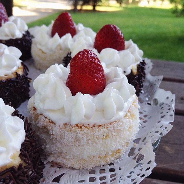 Mini Pasta #HamurİşiTarifleri #hindistancevizliminipasta #miniköstebekpasta