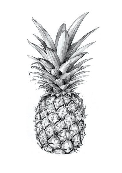 Pineapple Art Print                                                       …