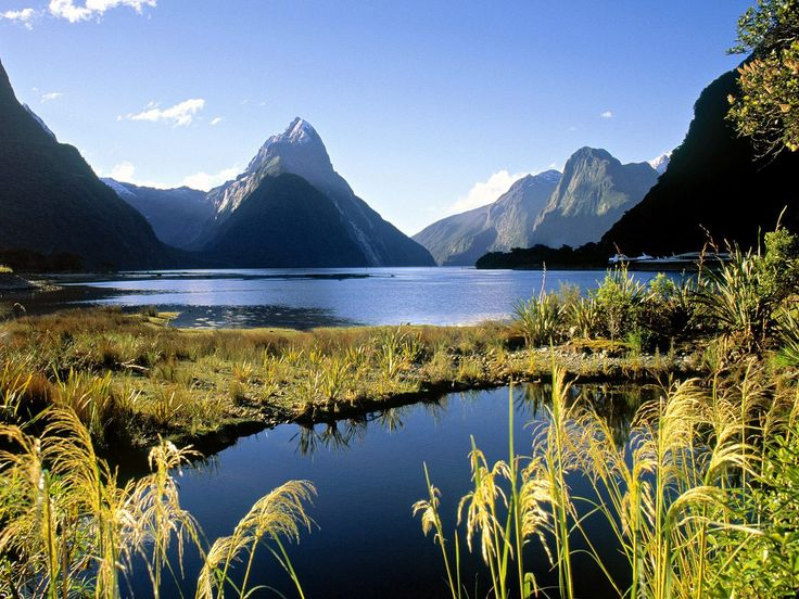 .: Buckets Lists, Favorite Places, Milford Sound, Beautiful, Places I D, National Parks, Newzealand, New Zealand, Country