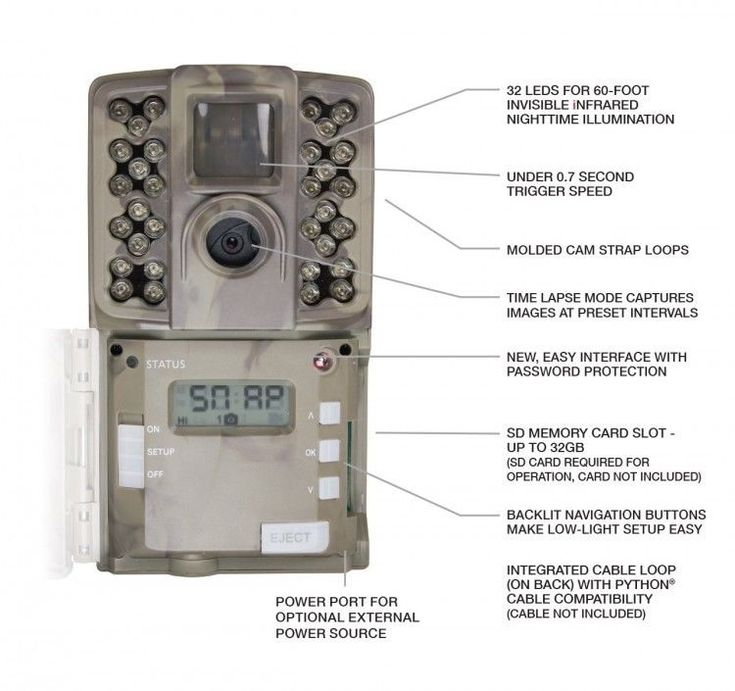 Hunting Game Camera 12MP Nighttime Animals Surveillance Camera Waterproof NEW #Moultrie