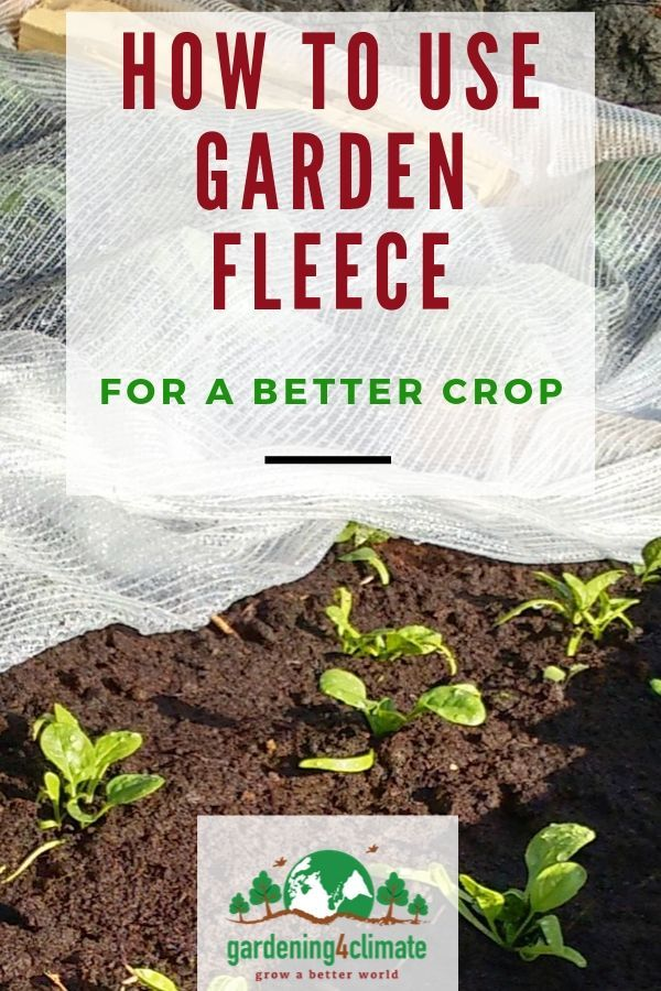 Garden Fleece How To Use Floating Row Covers For A 400 x 300