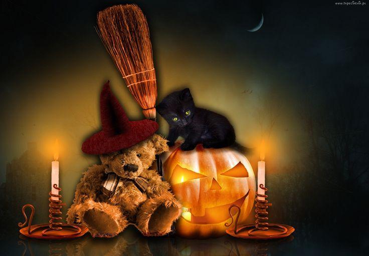 Halloween, Kot, Miś, Świece, Dynia